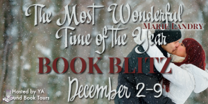 The Most Wonderful Time of the Year banner