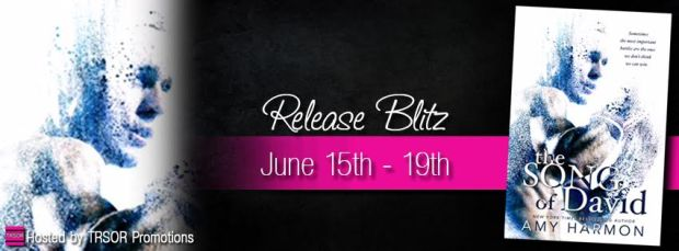 he song of david release blitz